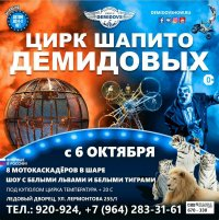 Шоу цирка шапито Демидовых в Иркутске