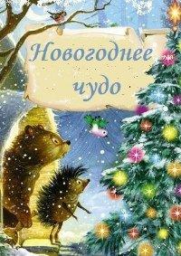Спектакль «Новогоднее чудо» в Красноярске