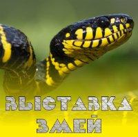 Выставка змей