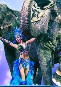 Цирковое шоу «Слоны в цирке!»
