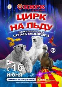 Цирковое шоу «Цирк на льду»