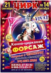 Шоу цирка «VIVAT»