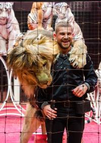 Цирковое шоу «Звёзды манежа» афиша мероприятия