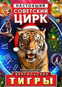 Цирковое шоу «Бенгальские тигры»