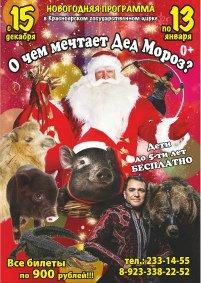 Цирковое шоу «О чём мечтает Дед Мороз»