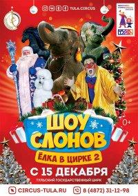 Цирковое шоу «Шоу слонов. Ёлка в цирке»