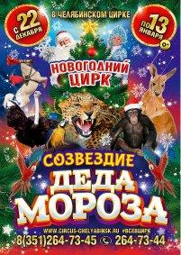 Цирковое шоу «Созвездие Деда Мороза»