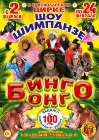 Цирковое шоу «Бинго-Бонго»