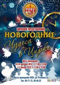 Цирковое шоу «Новогодние чудеса в цирке»
