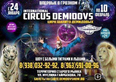 Шоу цирка-шапито Демидовых