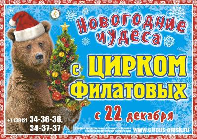 Цирковое шоу «Новогодние чудеса»