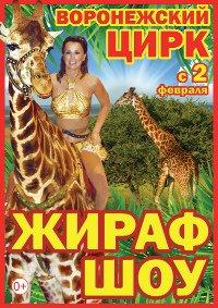 Цирковое шоу «Жираф-шоу»