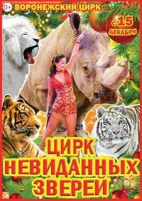 Цирковое шоу «Цирк невиданных зверей»