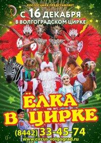 Цирковое шоу «Ёлка в цирке» Волгоград, Волгоградский государственный цирк (Волгоград)