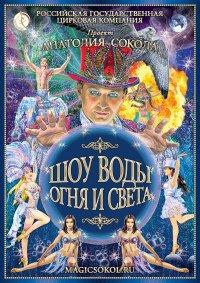 Цирковое шоу «Шоу воды, огня и света!»