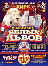 Цирковое шоу «Созвездие белых львов»