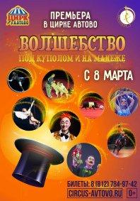 Цирковое шоу «Волшебство под куполом и на манеже»