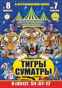 Цирковое шоу «Королевские тигры Суматры» Астраханский государственный цирк (Астрахань), Астрахань
