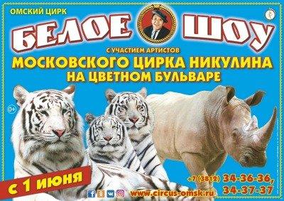 Цирковое шоу «Белое шоу» Омск, Омский государственный цирк (Омск)