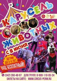Цирковое шоу «Карусель животных» Пермский государственный цирк (Пермь), Пермь