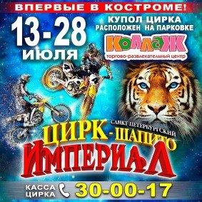 Шоу цирка-шапито «Империал» Кострома