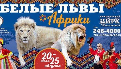 Цирковое шоу «Белые львы Африки»