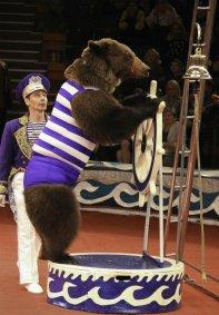 Цирковое шоу «Бон Вояж»