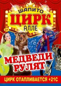 Шоу цирка-шапито «Алле»