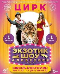 Цирковое шоу «Аливрувер»