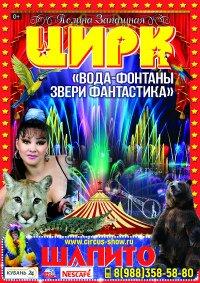 Шоу цирка-шапито Полины Запашной Михайловск