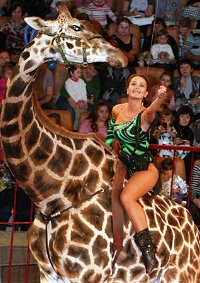 Цирковое шоу «Жираф шоу» афиша мероприятия