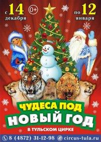 Цирковое шоу «Чудеса под Новый год» Тула, Тульский государственный цирк (Тула)
