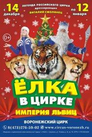 Цирковое шоу «Империя львиц»