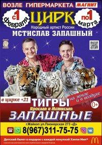 Цирковое шоу «Тигры на земле и в воздухе» Майкоп