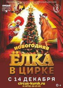 Цирковое шоу «Цирк зажигает огни»