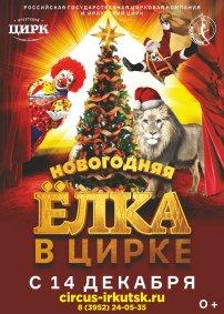 Цирковое шоу «Новогодняя ёлка в цирке»