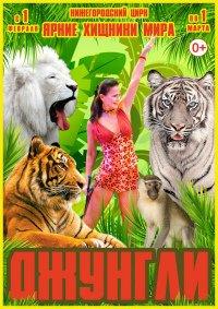 Цирковое шоу «Джунгли»