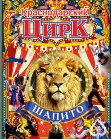 Шоу краснодарского цирка-шапито Тула