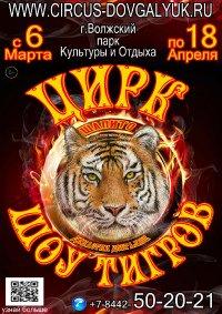 Шоу цирка династии Довгалюк афиша мероприятия