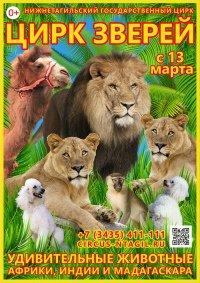 Цирковое шоу «Цирк зверей» афиша мероприятия