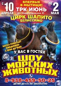 Шоу цирка-шапито «Белиссимо» афиша мероприятия