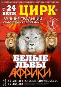 Цирковое шоу «Белые львы Африки» афиша мероприятия