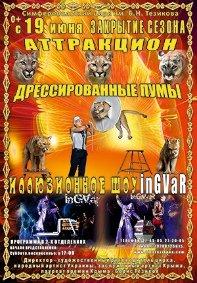 Цирковое шоу «Дрессированные пумы» афиша мероприятия
