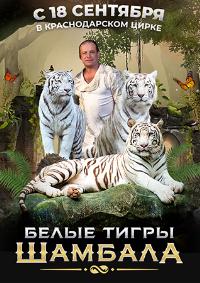 Цирковое шоу белых тигров «Шамбала» афиша мероприятия